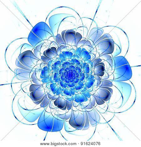 Dark Blue Fractal Flower Pattern