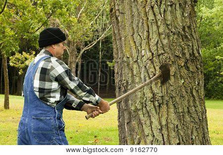 Vorbereiten der Baum Hacken Mann