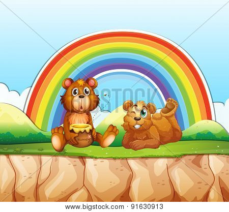 Two bears sitting on the field with rainbow background