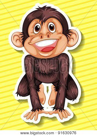 Closeup happy monkey on yellow background