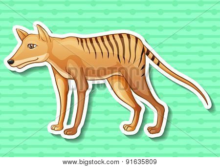 Closeup cute tasmanian tiger on green background