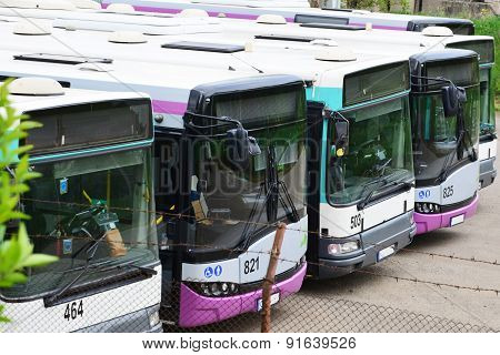 Row Of Busses
