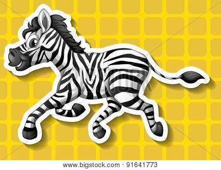 Closeup cute zebra running on yellow background