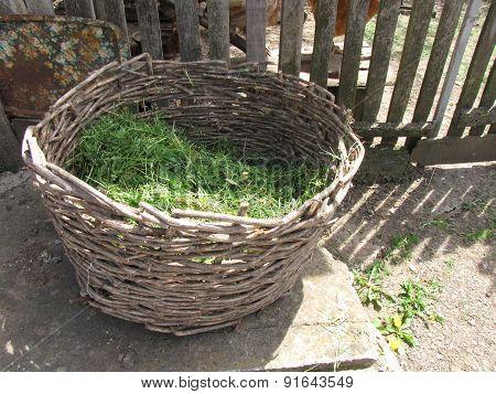 Wicker Basket With Green Grass