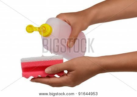 Bottle and sponge in hands