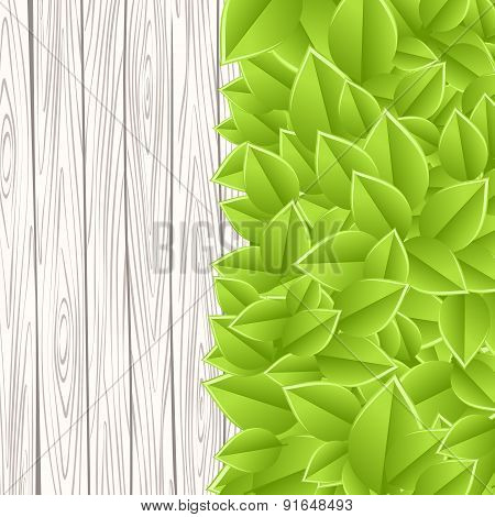 wall with leaves
