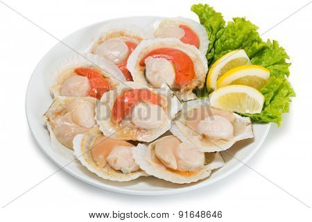 Fresh scallops in the wings for cooking in plate. From a series of Food Korean cuisine
