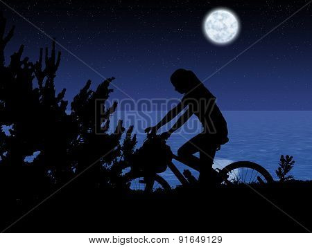 Bicycle Night Rider