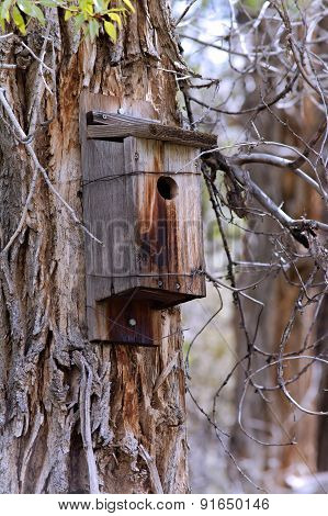 Wooden Birdhouse on Tree