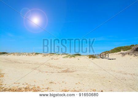 Shining Sun Over Capo Testa Shroeline