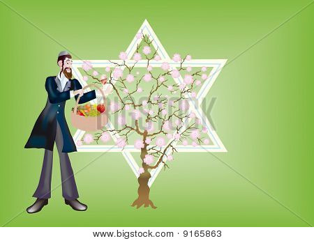 New Year Of Trees, Seder Tu Bi-shvat.