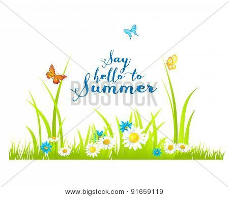 Summer flowers and green grass. Nature illustration with place for text.