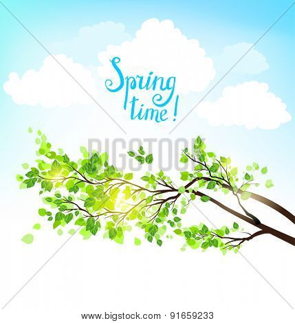 Nature illustration branches with green leaves and blue sky. Place for text