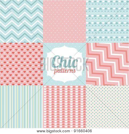 Patterns design over chic background vector illustration