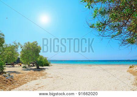 Alghero Lido On A Clear Summer Day