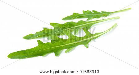 Green arugula leaves isolated on white