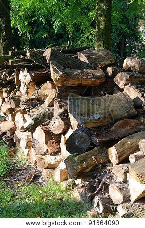 Heap Of Wooden Logs