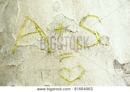Love message carved in tree close-up