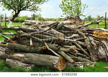 Pile of firewood, outdoors
