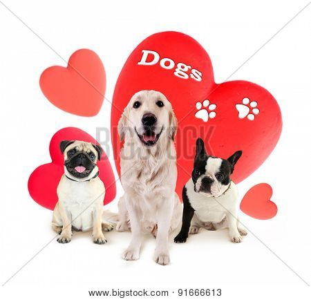 Cute dogs and red hearts isolated on white