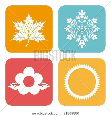 Seasons design over white background vector illustration