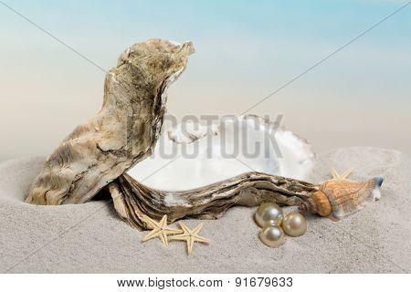 Open oyster with pearls lying on a sandy beach - excellent for photoshopping a baby or object in the oyster