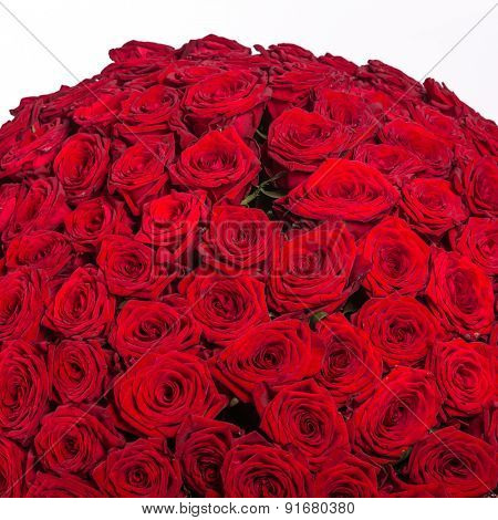 Red roses background - natural texture of love.