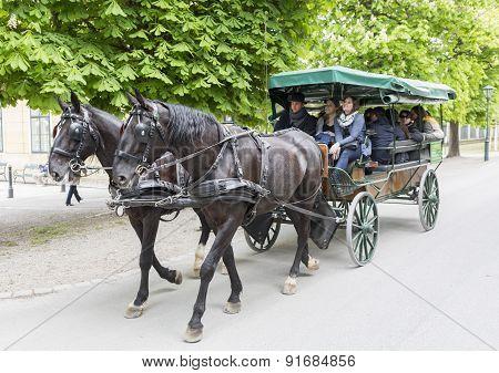 Schonbrunn Palace Horse Carriage
