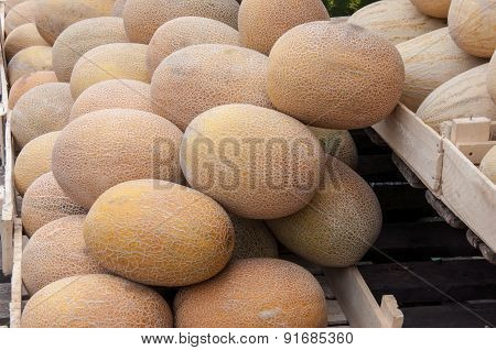 Melon Sold At The Bazaar