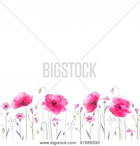 Floral glade with pink poppies and blue cornflowers. Seamless ornament.