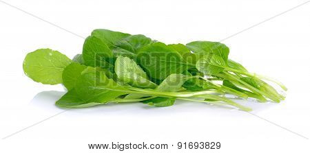 Fresh Green Turnip On The White Background