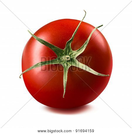 Single Tomato Isolated On White Background