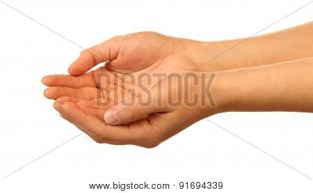 Hands holding something