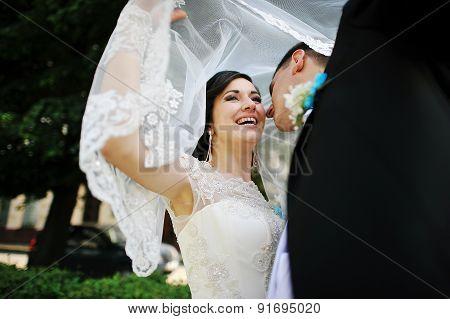 Wedding Couple Under The Veil