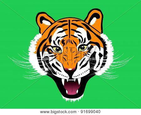 Tiger Anger