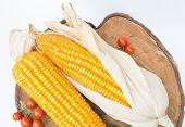 pic of corn-silk  - Dry brown corn and mini tomato - JPG