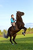 stock photo of bareback  - Young woman and her beautiful horse rearing up - JPG