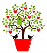 picture of bird-nest  - vector heart tree with nesting bird box in pot and couple of birds isolated on white background - JPG
