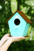image of nesting box  - Decorative nesting box in female hands on bright background - JPG