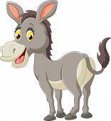 foto of donkey  - Vector illustration of Cartoon donkey happy isolated on white background - JPG