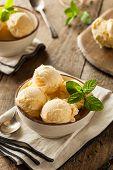 picture of vanilla  - Homemade Organic Vanilla Ice Cream with Mint - JPG