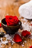 picture of salt-bowl  - Red roses in bowl with petals in bowl with pile of salt  - JPG