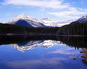 foto of snow capped mountains  - View across a Herbert Lake towards the snow capped mountains and pine trees Banff National Park Alberta Canada - JPG