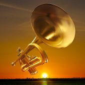 picture of trumpet  - abstract night golden background with city and trumpet - JPG