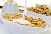 image of cereal bowl  - closeup of a bowl with yogurt and oatmeal cereals for breakfast on the kitchen table - JPG