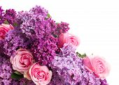 stock photo of purple white  - Purple Lilac flowers with pink roses close up  isolated on white background - JPG