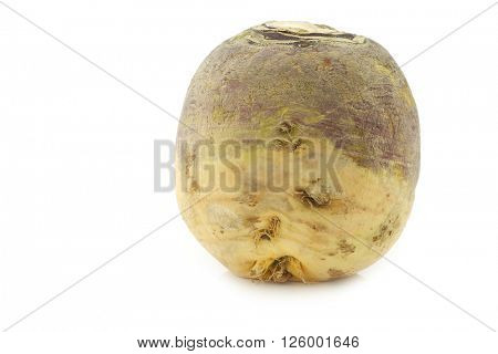 one fresh turnip(Brassica rapa rapa) on a white background