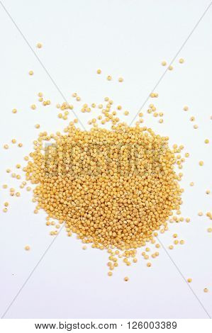 Millet On The White Background