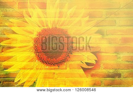double exposure and sweet dreamy ; sunflower bush and texture of layer bricks