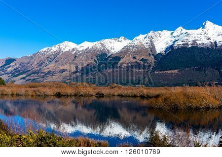 Glenorchy lagoon landscape with snow covered mountains reflected in lagoon water. Winter mountain landscape with frozen lake and yellow flowers. South Island New Zealand
